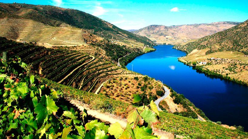 Alto Duero Región del Vino